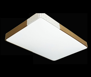 LJ鐵藝客廳燈 6340大長方金色